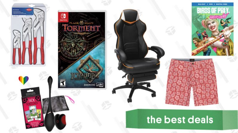 Stick Vacuum Cleaner Saturday's Best Deals: Birds of Prey, Gaming Chairs, Stylish Chinos, and More